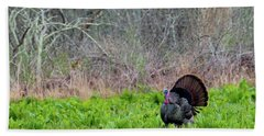 Hand Towel featuring the photograph Turkey And Cabbage by Bill Wakeley