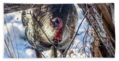 Bath Towel featuring the photograph Turkey In The Brush by Paul Freidlund