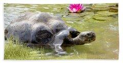 Turtle Takes A Swim Bath Towel