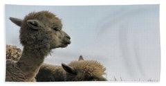 Two Alpaca Hand Towel