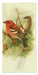 Two Barred Crossbill By Thorburn Hand Towel