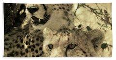 Two Cheetahs Bath Towel