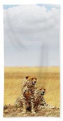 Cheetah Hand Towels