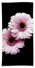 Two Gerberas On Black Bath Towel