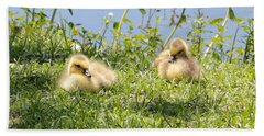 Two Goslings Bath Towel