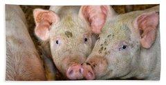 Two Pigs Bath Towel