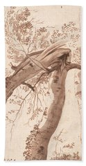 Two Silver Birches, The Front One Fallen Hand Towel