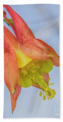 Hand Towel featuring the photograph Under A Wild Columbine by Barbara Bowen
