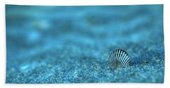 Underwater Seashell - Jersey Shore Bath Towel