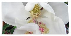 Unfolding Beauty Of Magnolia Hand Towel