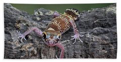 Hand Towel featuring the photograph Up And Over - Gecko by Nikolyn McDonald