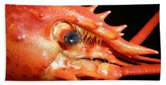 Up Close Lobster Bath Towel by Patricia Piffath