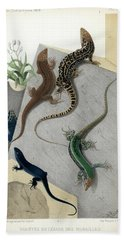 Varieties Of Wall Lizard Hand Towel