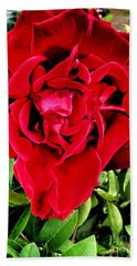 Velvet Red Rose Bath Towel
