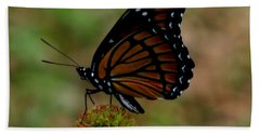 Viceroy Butterfly Bath Towel by Donna Brown