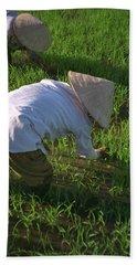 Vietnam Paddy Fields Hand Towel
