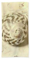 Vintage Seashell Still Life Hand Towel