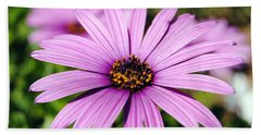 The African Daisy 1 Hand Towel
