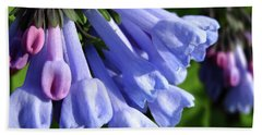 Virginia Blue Bells Hand Towel
