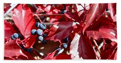 Hand Towel featuring the photograph Virginia Creeper by Linda Bianic