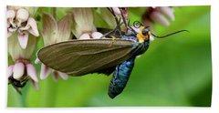 Virginia Ctenucha Moth Hand Towel