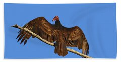 Hand Towel featuring the photograph Vivid Vulture .png by Al Powell Photography USA