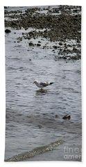 Wading Gull Hand Towel