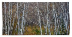Bath Towel featuring the photograph Walk In The Woods by James BO Insogna
