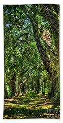Bath Towel featuring the photograph Walk With Me Avenue Of Oaks St Simons Island Art by Reid Callaway