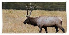 Wandering Elk Bath Towel