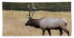 Wandering Elk Hand Towel