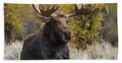 Hand Towel featuring the photograph Washakie During The Rut Season by Yeates Photography