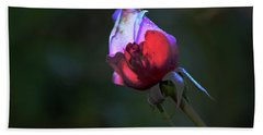 Water Droplets On The Rose Bath Towel by Michael Courtney
