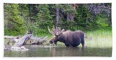 Water Feeding Moose Hand Towel