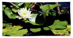 Hand Towel featuring the photograph Water Lily by Meta Gatschenberger