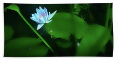 Water Lily N Pond Hand Towel