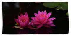 Water Lily Hand Towel by Nancy Landry