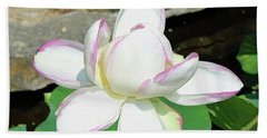 Water Lotus Bath Towel by Inspirational Photo Creations Audrey Woods
