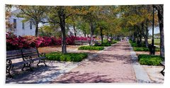 Waterfront Park Charleston Sc Usa Bath Towel