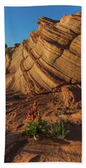 Waterhole Canyon Evening Solitude Hand Towel