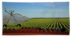 Hand Towel featuring the photograph Watering The Garden 002 by George Bostian