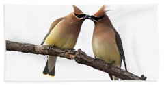 Waxwings In Love Hand Towel by Mircea Costina Photography