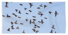Bath Towel featuring the photograph Waxwings by Mircea Costina Photography