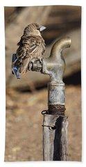 Weaver Bird Hand Towel