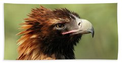 Wedge-tailed Eagle Bath Towel by Marion Cullen