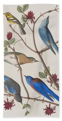 Western Blue-bird Bath Towel