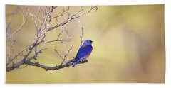 Western Bluebird On Bare Branch Bath Towel