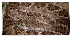 Western Diamondback Rattlesnake Bath Towel