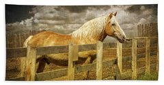 Western Horse In Alberta Canada Hand Towel by Randall Nyhof