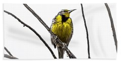 Western Meadowlark Hand Towel by Amy Sorvillo